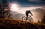 302824-nature-bicycle.jpg